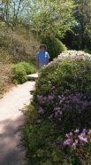 Az garden 4